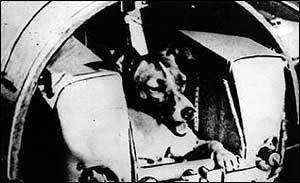Laika pôs soviéticos na liderança da corrida espacial