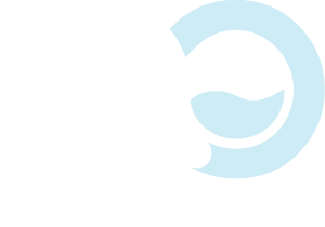 accessible oceans foundation logo