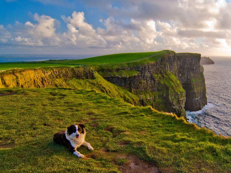 12-Daagse autorondreis De Westkust Van Ierland B&B