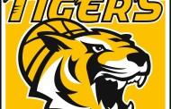 BBL-erfahrener Center Gary McGhee wird ein Tiger