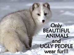 Say no to fur & leather products