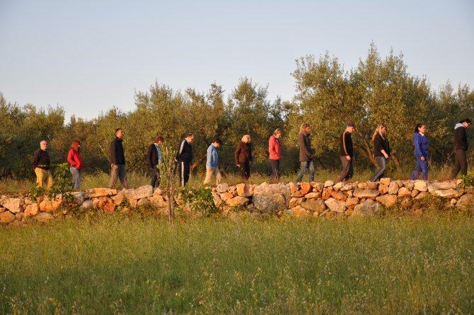 AchtsamesWandern Gruppe vor Olivenbaeumen