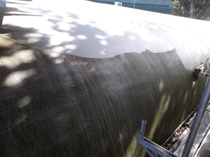 Verwijderen mos en algen