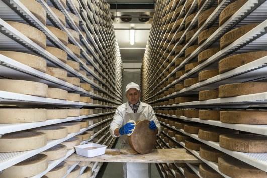 Pulitura manuale formaggio caseificio ValleSabbia
