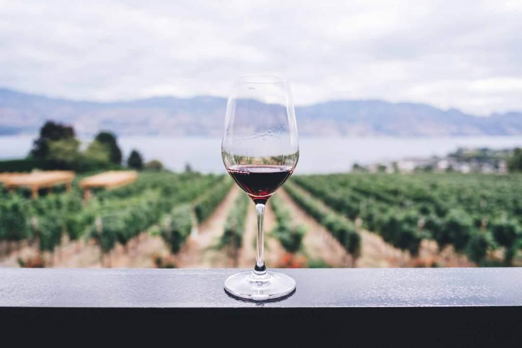 Bicchiere di vino rosso con vista vigneti e lago