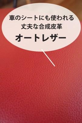 ミニ・ショコラ赤 (2)