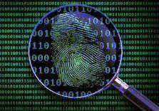 análisis forense, consultoría de seguridad