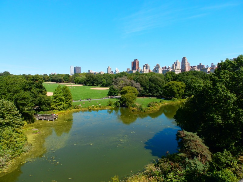 5 parques de Nueva York imprescindibles