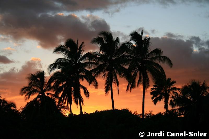 Hawái, viajar al paraíso