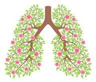 exercices respirations chezmademoiselleb
