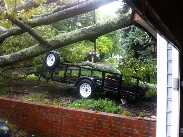 treetrailer