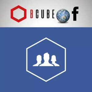 facebook fan int