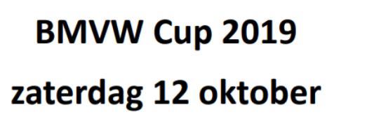 BMWV Cup