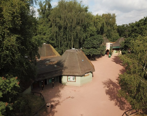 Work has begun on removing the former visitor facilities at Sherwood Forest National Nature Reserve, the first step in returning the area back to nature and creating extra forest for visitors to enjoy and wildlife to inhabit.