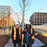 The redevelopment of Birmingham's Centenary Square reached a leafy milestone as work began to plant the first of the site's trees.