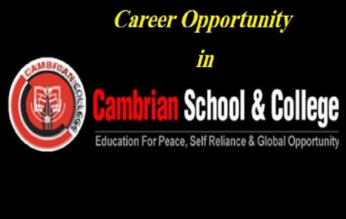 Cambrian School & college job circular