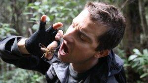 Bear Grylls fa uno spuntino con un insetto