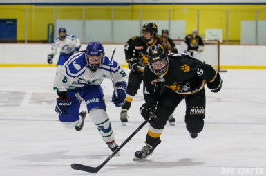 Connecticut Whale defender Shannon Doyle (6) and Boston Pride forward Emily Field (15) chase down a puck