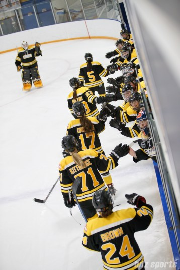 Boston Blades players high five after Boston's second goal of the game