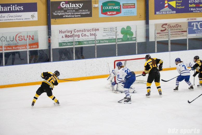 Boston Blades forward Megan Myers (15) slips the puck under the pad of Toronto Furies goalie Sonja van der Bliek (30) for the first goal of the game
