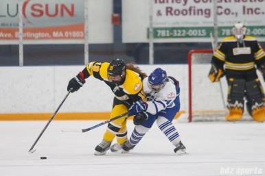 Boston Blades forward Taylor Wasylk (19) works to keep the puck away from Toronto Furies forward Alessandra Bianchi (14)