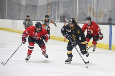 Boston Pride forward Jillian Dempsey (14) controls the puck for the Pride