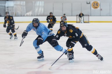 Buffalo Beauts defender Lisa Chesson (11) and Boston Pride forward Dana Trivigno (8) chase down a puck