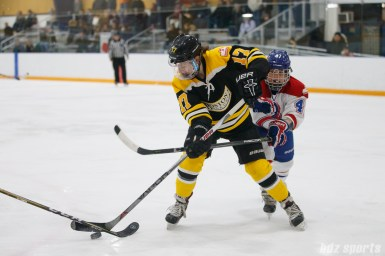 Boston Blades forward Meghan Grieves (17) looks to control the puck while being defended by Montreal Les Canadiennes forward Emmanuelle Blais (47)
