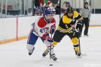 Montreal Les Canadiennes forward Emmanuelle Blais (47) takes the puck down ice