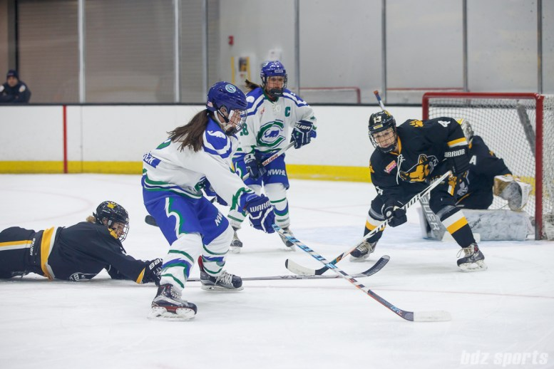 Connecticut Whale forward Kelly Babstock (8)