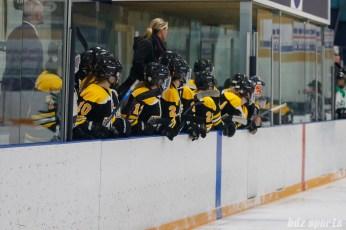 The Boston Blades bench