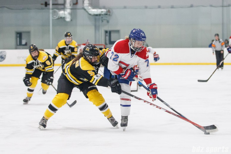 CWHL - Worcester Blades vs Montreal Les Canadiennes - February 17, 2019