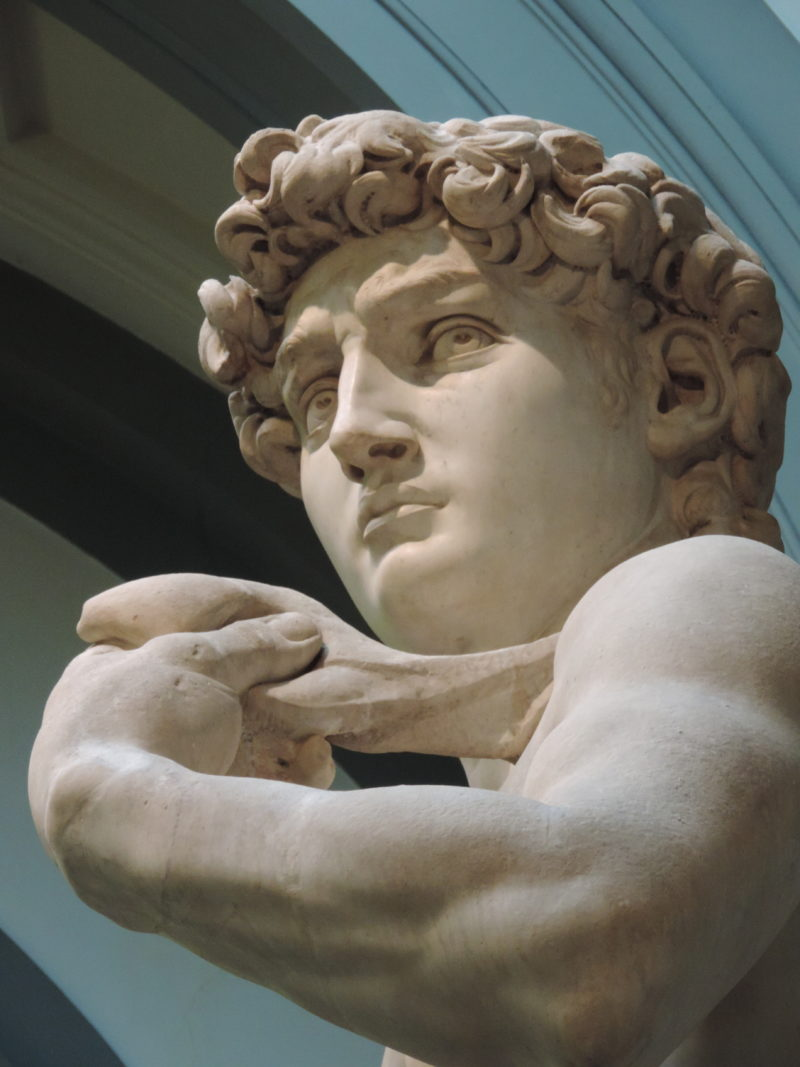 The David in the Accademia