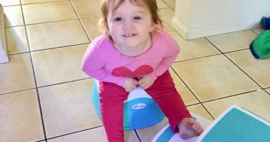 Dreambaby® making potty training easier review