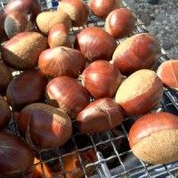 秋の旬の栗炭火焼きレシピ