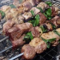 天然鴨の串焼き大根おろし添えレシピ