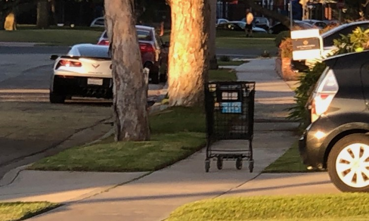 Shopping Cart and a For Sale Sign