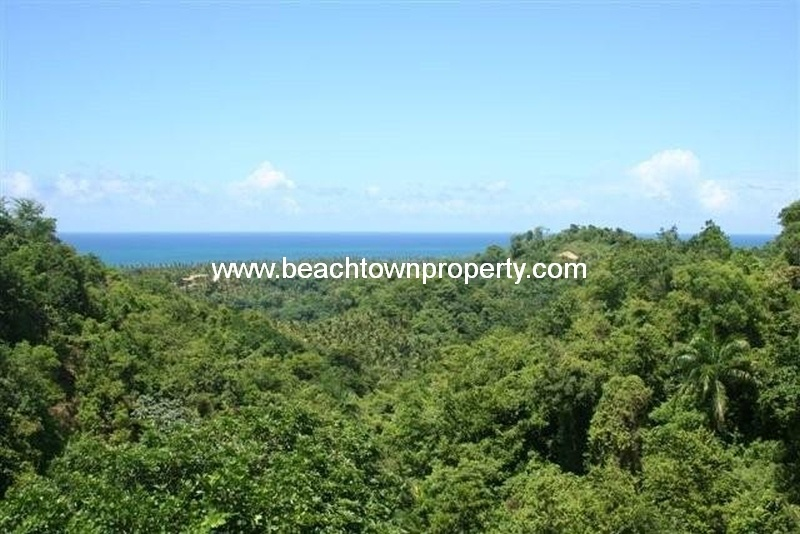 Large lot in gated community Las Terrenas Samana