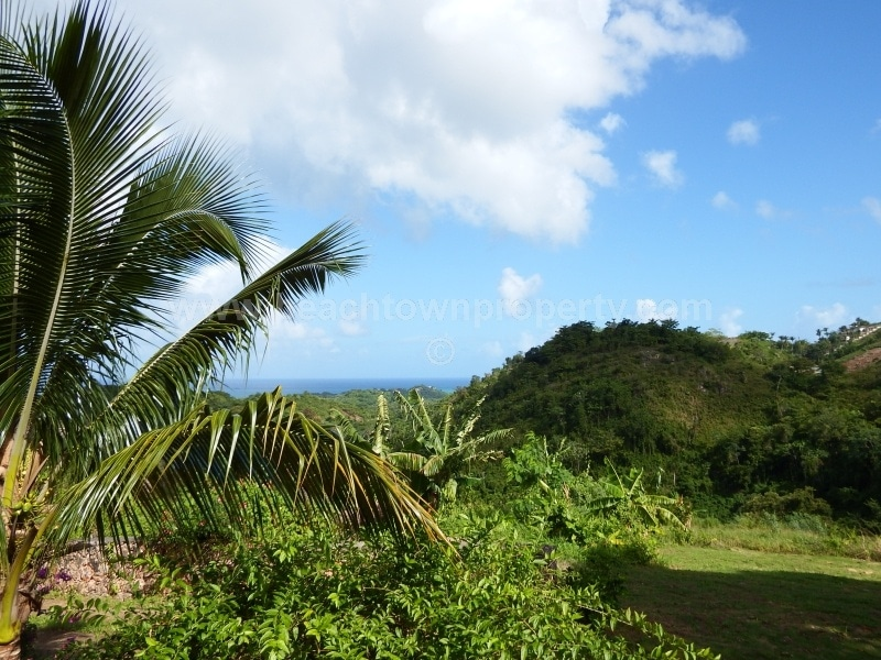 Ocean View Land with a River and House Samana Dominican Republic