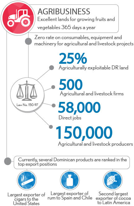 Agribusiness Investments In The Dominican Republic