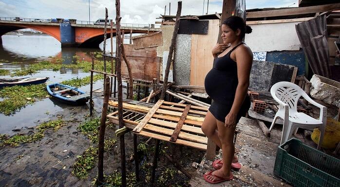 Zika Virus in Brazil