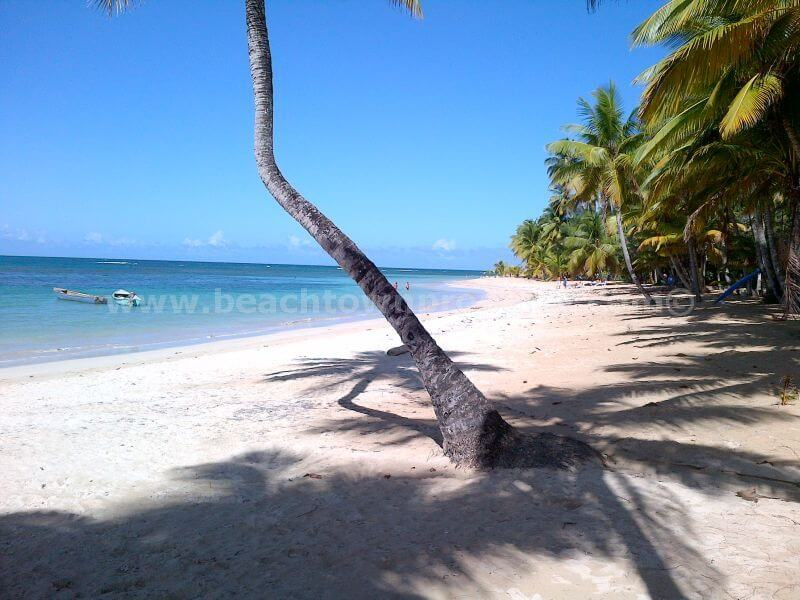 Land For Sale Las Terrenas Samana Dominican Republic