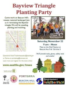 Bayview Triangle Planting Project