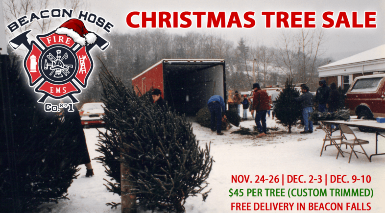 beacon hoses christmas tree sales begin black friday - Christmas Tree Black Friday