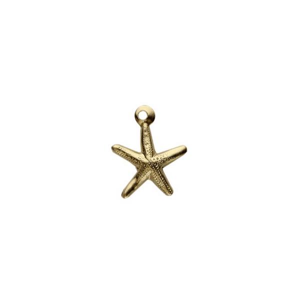 Starfish Pendant Charm
