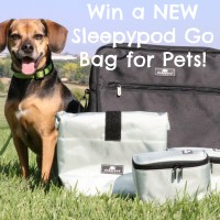 Win a NEW Sleepypod Go Bag for Pets! *GIVEAWAY*