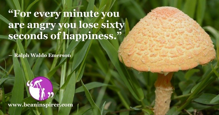 for-every-minute-you-are-angry-you-lose-sixty-seconds-of-happiness-ralph-waldo-emerson-be-an-inspirer