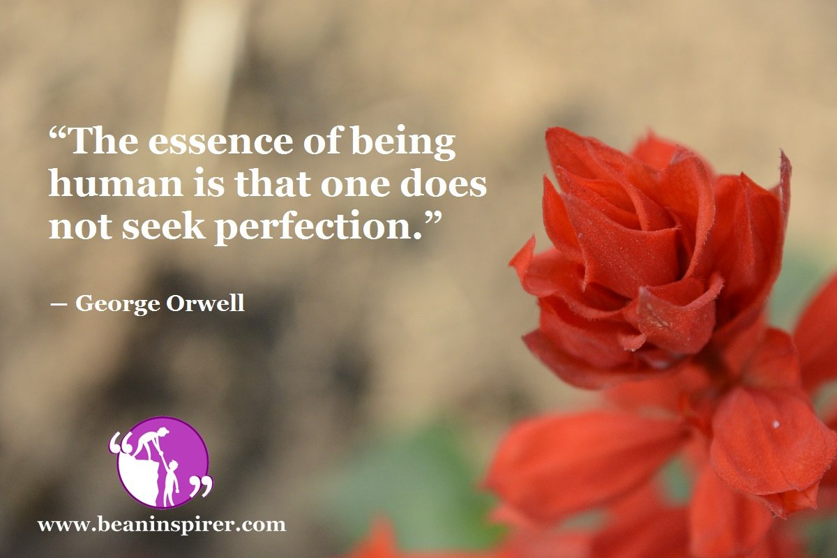 """""""The essence of being human is that one does not seek perfection."""" ― George Orwell"""