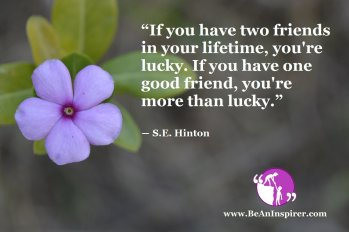 """""""If you have two friends in your lifetime, you're lucky. If you have one good friend, you're more than lucky."""" ― S.E. Hinton"""