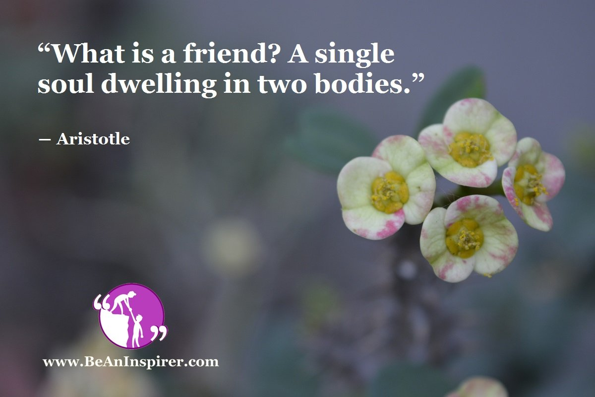 """What is a friend? A single soul dwelling in two bodies."" ― Aristotle"